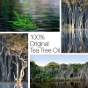 ABC TEA TREE OIL original 30 ml